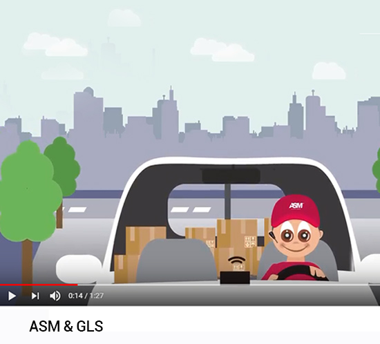 ASM GLS video